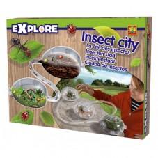 Mrówkarium - miasto owadów